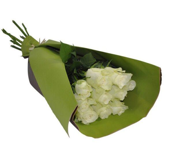 10 Rosas blancas